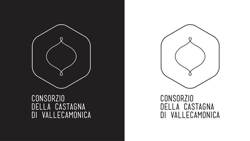 zepstudio_vacamonica12